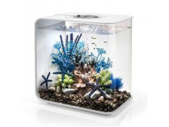 Oase biOrb FLOW 30 MCR (akvárium bílé)