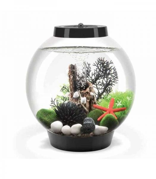 Oase biOrb CLASSIC 15 LED (akvárium černé) - Akvaristika Oase biOrb Akvária biOrb biOrb CLASSIC