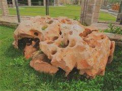 Měsíční kámen - karamelová 200/500mm (kg)