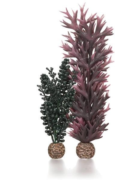 Oase biOrb set rostlin fialová a tmavě zelená - Akvaristika Oase biOrb Dekorace a příslušenství Rostliny