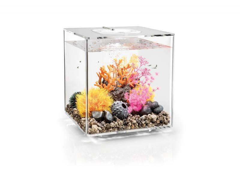 Oase biOrb CUBE 60 MCR (akvárium transparentní) - Akvaristika Oase biOrb Akvária biOrb biOrb CUBE