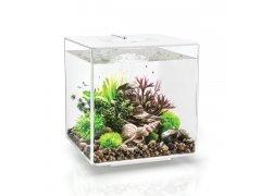 Oase biOrb CUBE 30 LED (akvárium bílé)