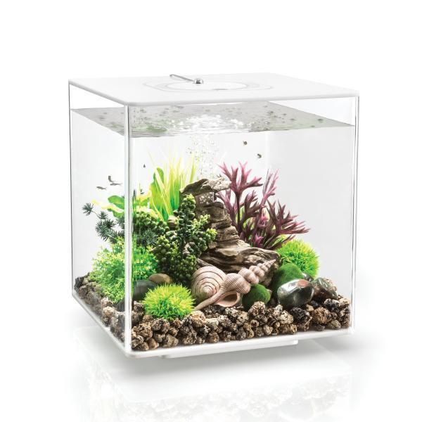 Oase biOrb CUBE 30 LED (akvárium bílé) - Akvaristika Oase biOrb Akvária biOrb biOrb CUBE