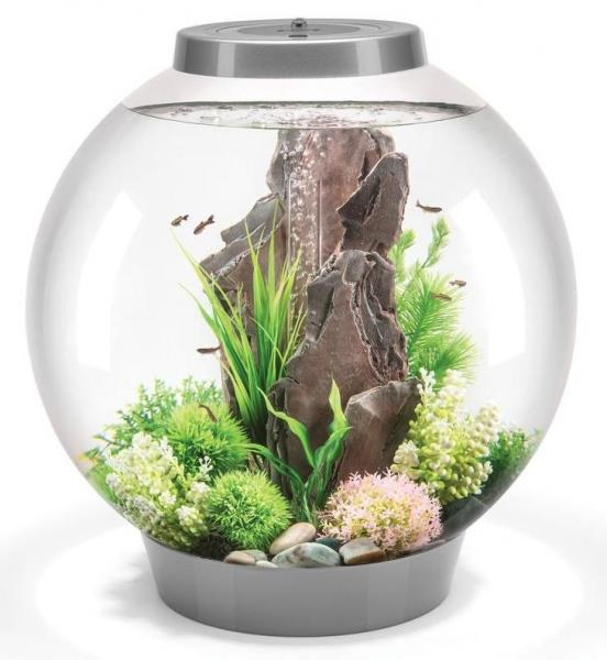 Oase biOrb CLASSIC 60 LED (akvárium stříbrné) - Akvaristika Oase biOrb Akvária biOrb biOrb CLASSIC