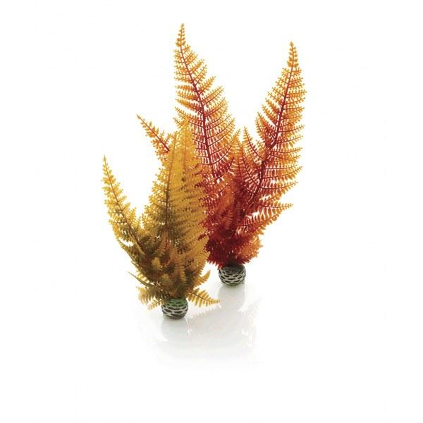 Oase biOrb set rostlin podzimní barvy - Akvaristika Oase biOrb Dekorace a příslušenství Rostliny