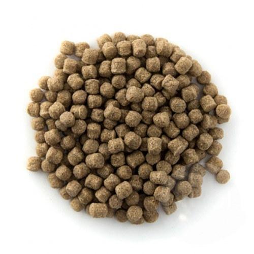 Wheat Germ krmivo pro KOI (4kg- 6mm) - Ryby a potřeby pro ryby Krmiva při nižších teplotách vody