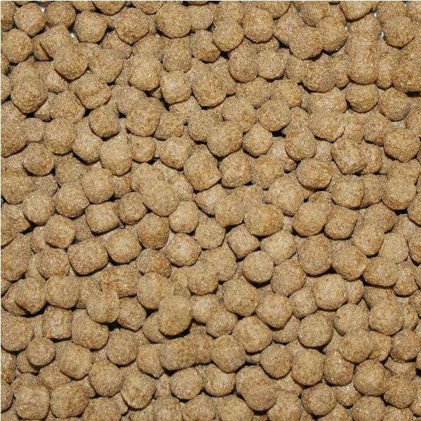 Wheat Germ krmivo pro KOI (4kg-granule 3mm) - Ryby a potřeby pro ryby Krmiva při nižších teplotách vody