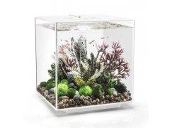 Oase biOrb CUBE 60 MCR (akvárium bílé)