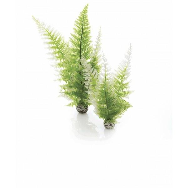 Oase biOrb set rostlin zimní barvy - Akvaristika Oase biOrb Dekorace a příslušenství Rostliny