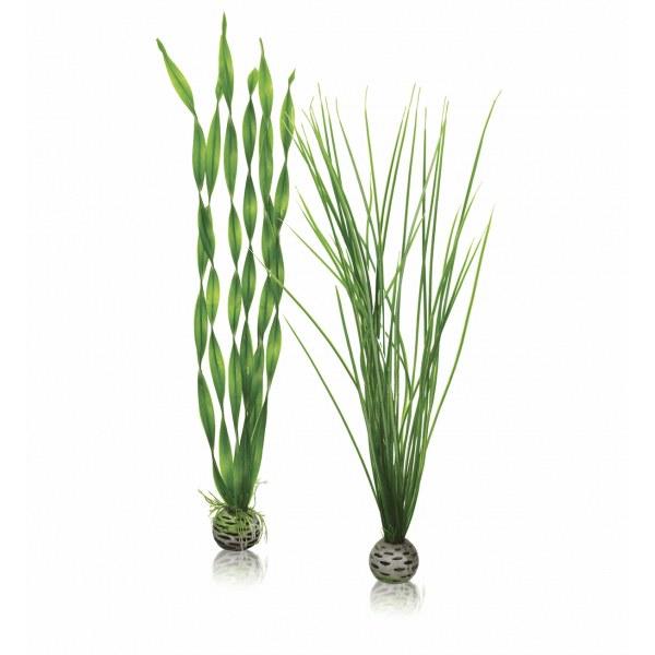 Oase biOrb set rostlin zelené L - Akvaristika Oase biOrb Dekorace a příslušenství Rostliny