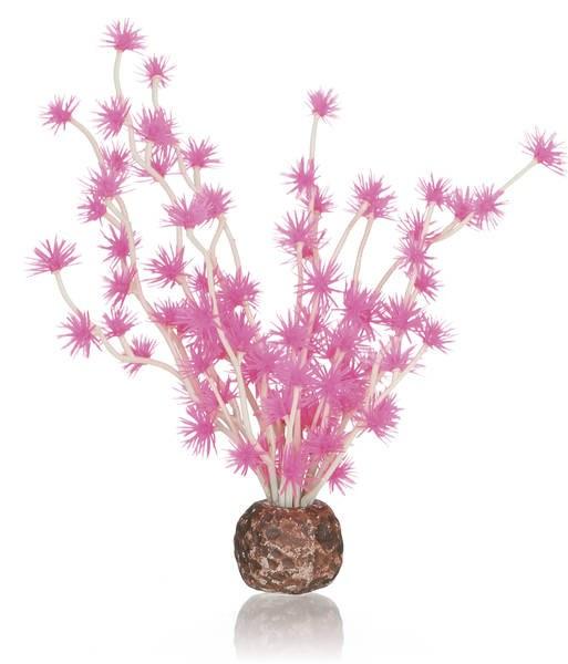 Oase biOrb rostlina Bonsai Ball růžová - Akvaristika Oase biOrb Dekorace a příslušenství Rostliny