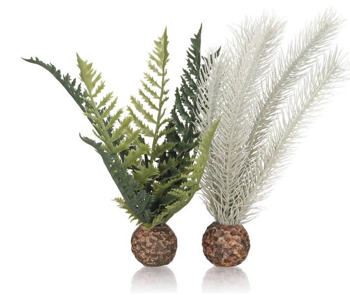 Oase biOrb set rostlin zeleno-šedá S - Akvaristika Oase biOrb Dekorace a příslušenství Rostliny