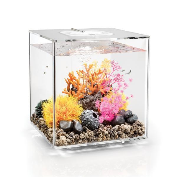 Oase biOrb CUBE 30 LED (akvárium transparentní) - Akvaristika Oase biOrb Akvária biOrb biOrb CUBE