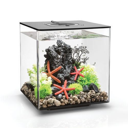 Oase biOrb CUBE 30 MCR (akvárium černé) - Akvaristika Oase biOrb Akvária biOrb biOrb CUBE