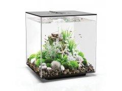 Oase biOrb CUBE 60 LED (akvárium černé)