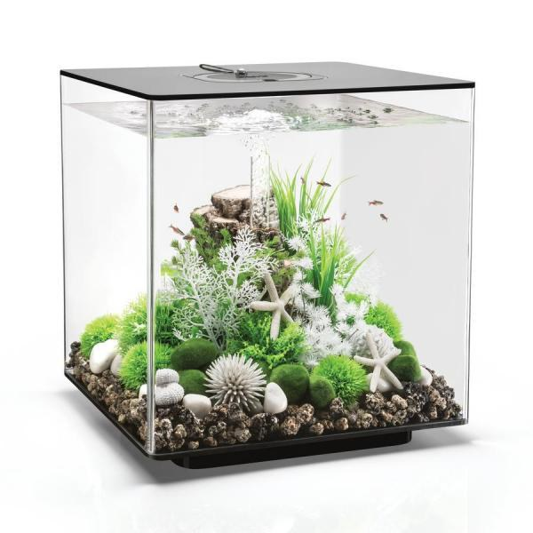 Oase biOrb CUBE 60 LED (akvárium černé) - Akvaristika Oase biOrb Akvária biOrb biOrb CUBE