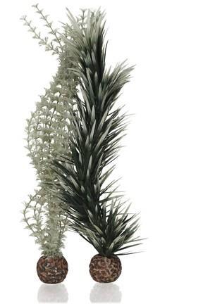 Oase biOrb set rostlin Ambulie šedo-zelená M - Akvaristika Oase biOrb Dekorace a příslušenství Rostliny