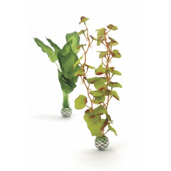 Oase biOrb set rostlin zelené M - Akvaristika Oase biOrb Dekorace a příslušenství Rostliny