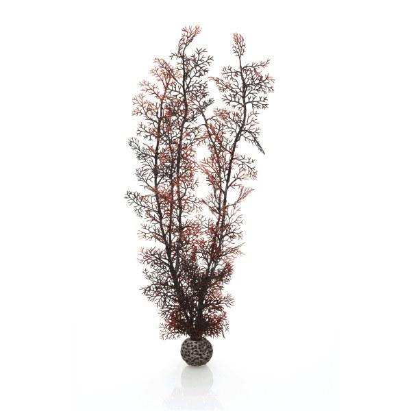 Oase biOrb rostlina karmínová XL - Akvaristika Oase biOrb Dekorace a příslušenství Rostliny