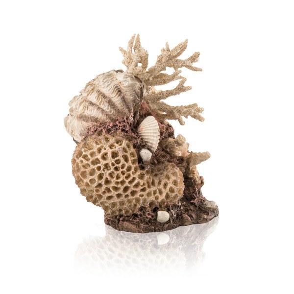 Oase biOrb dekorace korály s mušlemi - Akvaristika Oase biOrb Dekorace a příslušenství Ornamenty