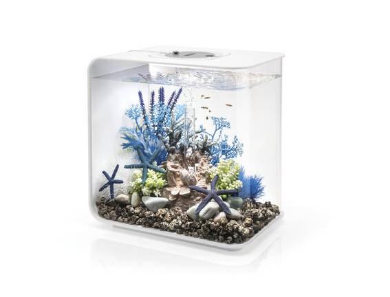 Oase biOrb FLOW 30 LED (akvárium bílé) - Akvaristika Oase biOrb Akvária biOrb biOrb FLOW
