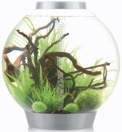 Oase biOrb CLASSIC 105 MCR (akvárium stříbrné) - Akvaristika Oase biOrb Akvária biOrb biOrb CLASSIC