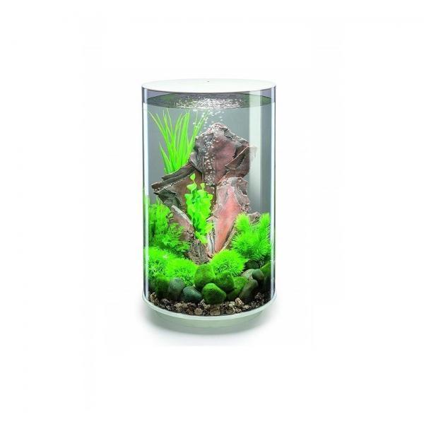 Oase biOrb TUBE 30 MCR (akvárium bílé) - Akvaristika Oase biOrb Akvária biOrb biOrb TUBE