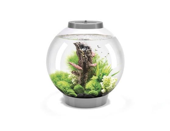 Oase biOrb CLASSIC 30 MCR (akvárium stříbrné) - Akvaristika Oase biOrb Akvária biOrb biOrb CLASSIC