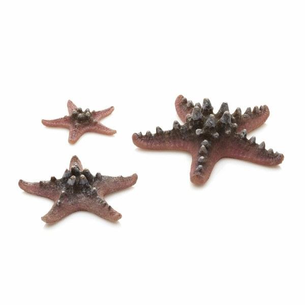 Oase biOrb mořské hvězdice růžové - Akvaristika Oase biOrb Dekorace a příslušenství Ornamenty