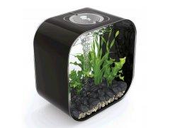 Oase biOrb LIFE 30 MCR (akvárium černé)