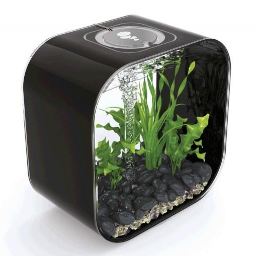 Oase biOrb LIFE 30 MCR (akvárium černé) - Akvaristika Oase biOrb Akvária biOrb biOrb LIFE