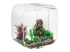 Oase biOrb LIFE 30 MCR (akvárium transparentní)