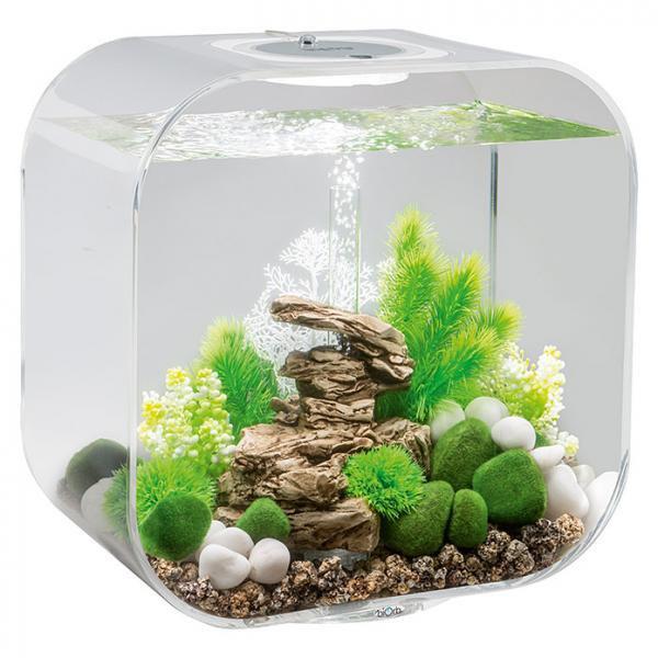Oase biOrb LIFE 30 MCR (akvárium transparentní) - Akvaristika Oase biOrb Akvária biOrb biOrb LIFE