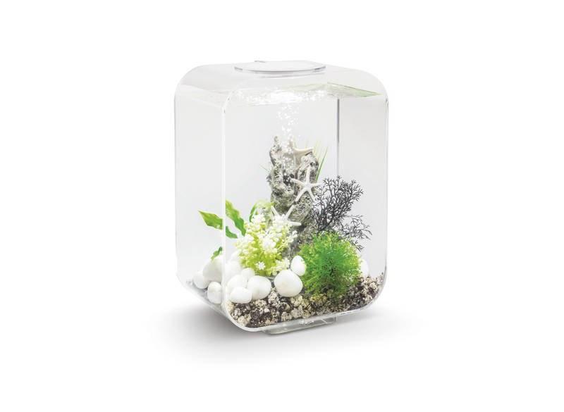 Oase biOrb LIFE 15 MCR (akvárium transparentní) - Akvaristika Oase biOrb Akvária biOrb biOrb LIFE