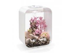 Oase biOrb LIFE 15 MCR (akvárium bílé)