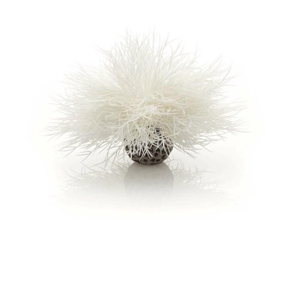 Oase biOrb vodní ozdobná tráva bílá - Akvaristika Oase biOrb Dekorace a příslušenství Rostliny