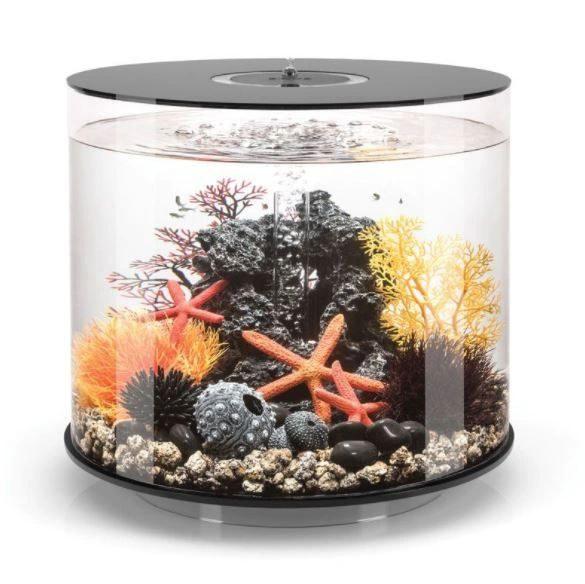 Oase biOrb TUBE 35 MCR (akvárium černé) - Akvaristika Oase biOrb Akvária biOrb biOrb TUBE
