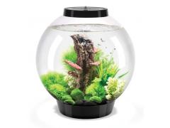 Oase biOrb CLASSIC 30 MCR (akvárium černé)