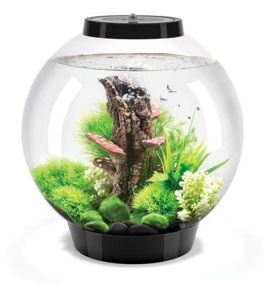 Oase biOrb CLASSIC 30 MCR (akvárium černé) - Akvaristika Oase biOrb Akvária biOrb biOrb CLASSIC