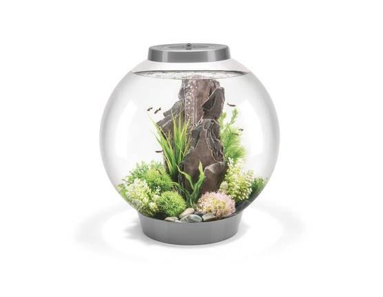 Oase biOrb CLASSIC 60 MCR (akvárium stříbrné) - Akvaristika Oase biOrb Akvária biOrb biOrb CLASSIC
