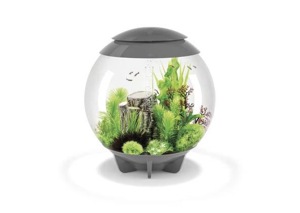 Oase biOrb HALO 60 LED (akvárium šedé) - Akvaristika Oase biOrb Akvária biOrb biOrb HALO