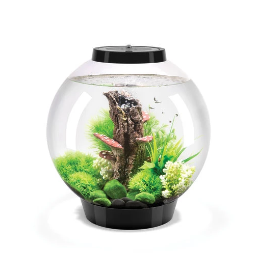 Oase biOrb CLASSIC 30 LED (akvárium černé) - Akvaristika Oase biOrb Akvária biOrb biOrb CLASSIC