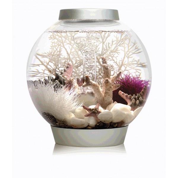 Oase biOrb CLASSIC 15 MCR (akvárium stříbrné) - Akvaristika Oase biOrb Akvária biOrb biOrb CLASSIC