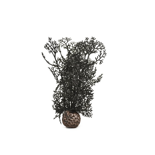 Oase biOrb rostlina černá S - Akvaristika Oase biOrb Dekorace a příslušenství Rostliny