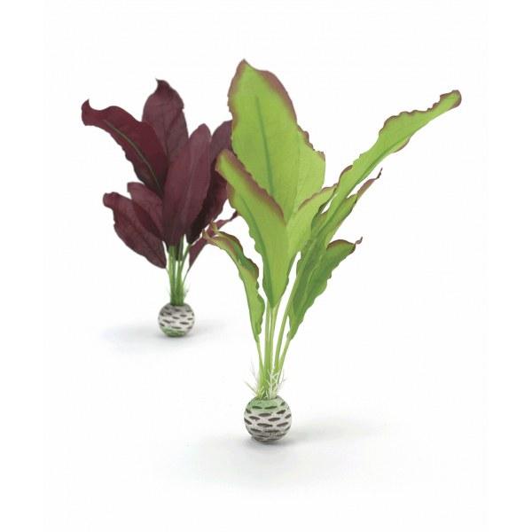 Oase biOrb set rostlin zelená a fialová M - Akvaristika Oase biOrb Dekorace a příslušenství Rostliny