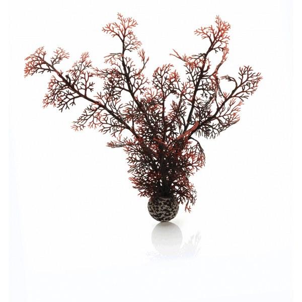 Oase biOrb rostlina karmínová M - Akvaristika Oase biOrb Dekorace a příslušenství Rostliny