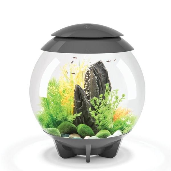 Oase biOrb HALO 30 MCR (akvárium šedé) - Akvaristika Oase biOrb Akvária biOrb biOrb HALO