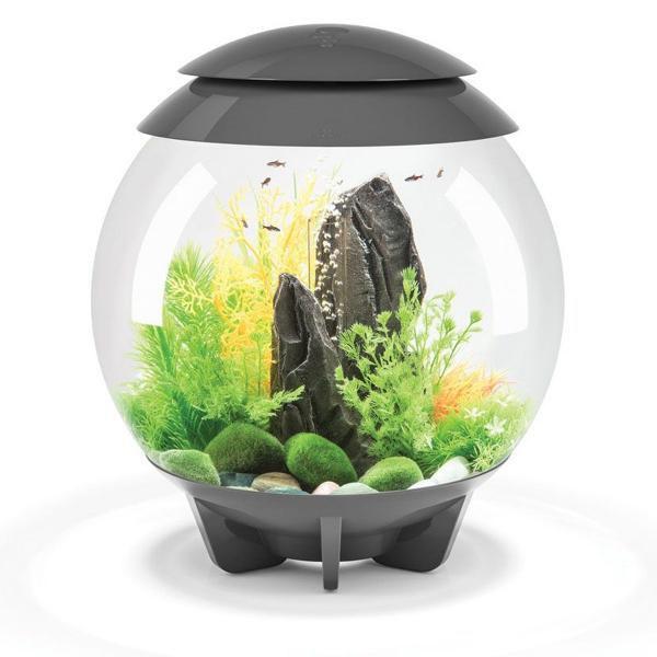 Oase biOrb HALO 30 LED (akvárium šedé) - Akvaristika Oase biOrb Akvária biOrb biOrb HALO