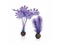 Oase biOrb rostliny fialové malé (dekorační rostliny)