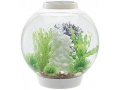 Oase biOrb CLASSIC 30 LED (akvárium bílé)